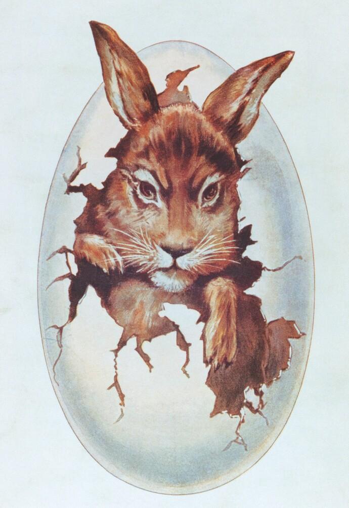 Un conejo como fuente de inspiración de la marca Vaillant